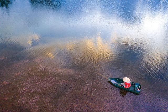 Pink Algae, Pink, Algae, Fisherman, Fishing, Lake