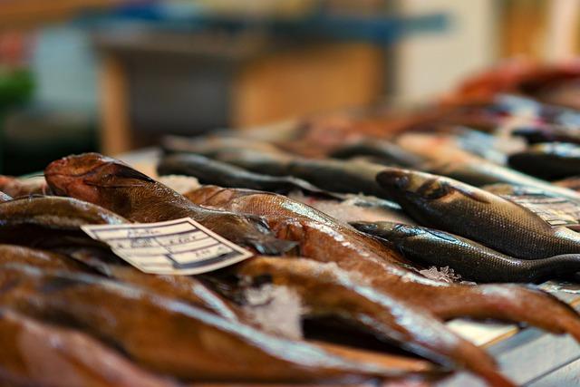 Fish Market, Fish, Market, Sea Animals, Food, Fishing