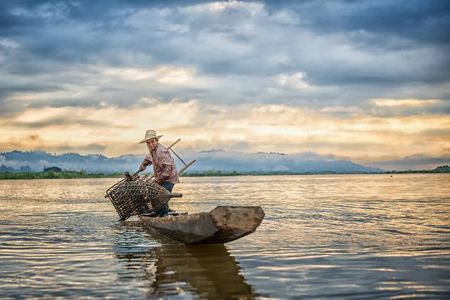 Fisherman, Fishing, Fish, Boat, Net, Catch, Fishermen