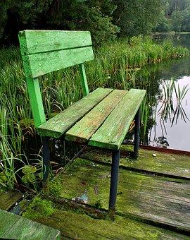 Bench, Lake, Fishing, Green