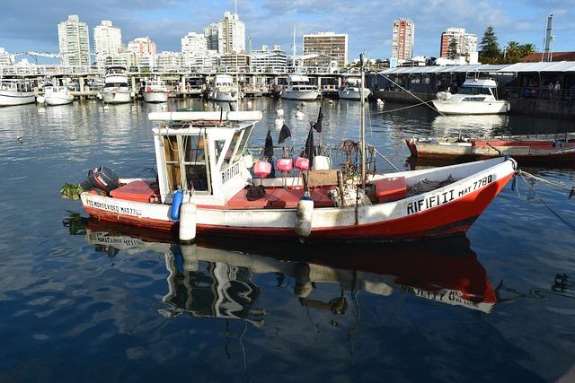 Fishing, Boat, Barca, Port