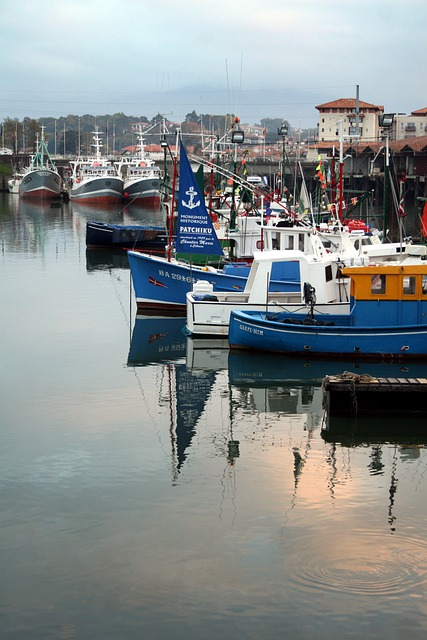 Boat, Fishing Port, St Jean De Luz