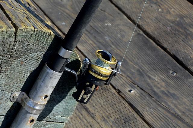 Fishing Reel, Fish, Fishing Rod, Hobby, Peaceful, Coast