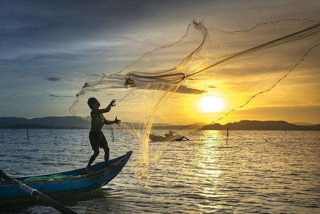 Fishing, Fisherman, Sunset, Sea, Ocean, Silhouette