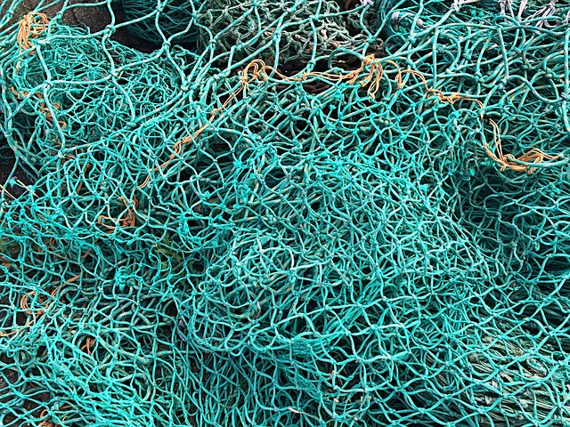Fishing Net, Fishing, Green, Sea, Fisherman, Web, Coast