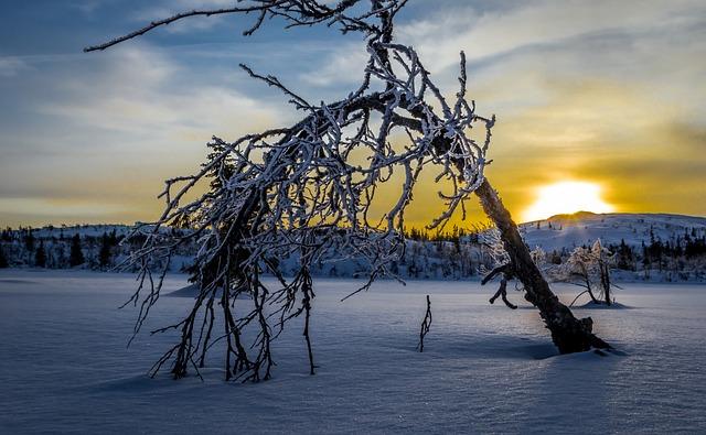 Vinter, Soloppgang, Landskap, Fjell, Ikke-urban Scene