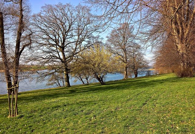 Landscape, Fjord, Baltic Sea, Denmark, Spring, Park