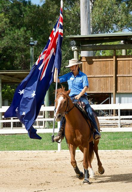 Horse, Flag, Competition, Sport, Australia, Rider