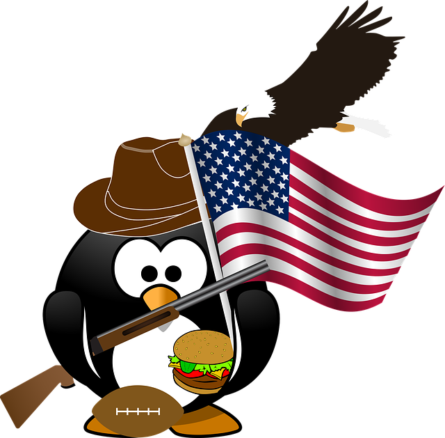 Penguin, Flag, Eagle, American, Patriotic, Burger, Ball