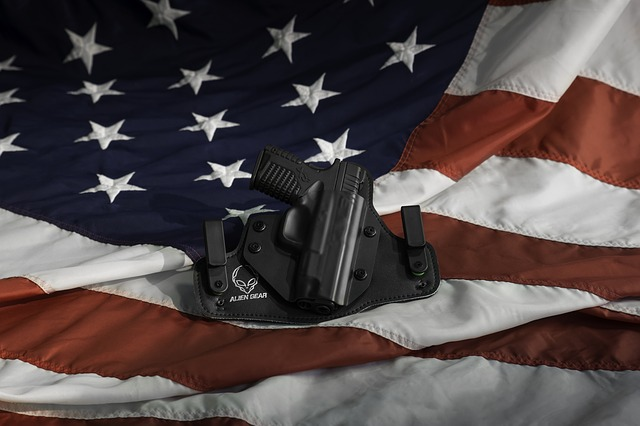 Holster, Gun, Pistol, Flag, Weapon, War, Military