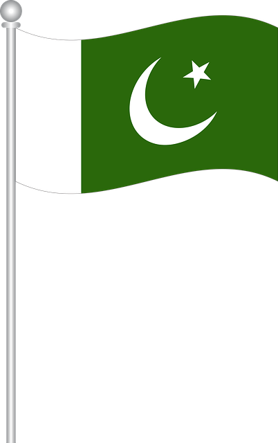 Flag Of Pakistan, Flag, Flag Of World, Country, Symbol