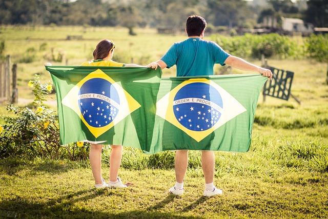 Brazil, Patriot, Flag