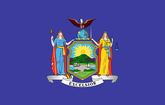 New York, Usa, State Flag, Flag, Blue, Excelsior