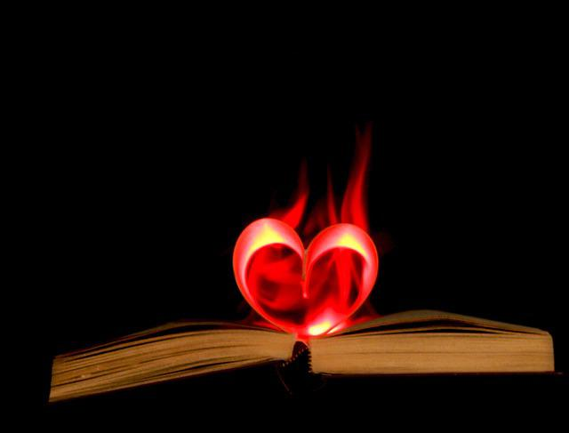 Free Photo Heart Logo Fire Emblem Love Icon Flame