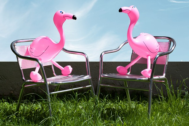 Flamingo, Inflatable, Pink, Romantic, Lovers, Garden