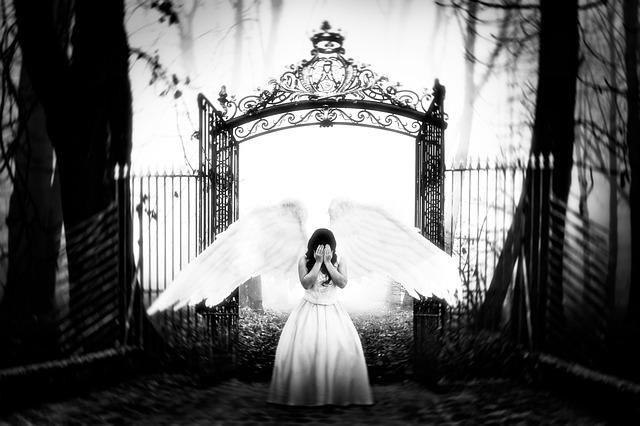 Angel, Flight, Gate, Paradise