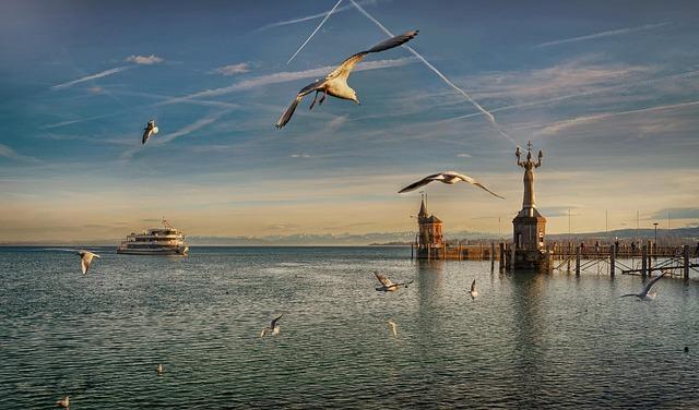 Flight, Port, Bird, Lake, Seagull, Lake Constance, Ship