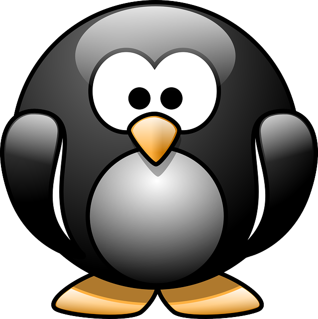 Penguin, Birds, Aquatic, Flightless, Black, White