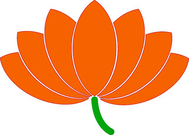 Flower, Lotus, Nature, Blossom, Bloom, Beautiful, Flora