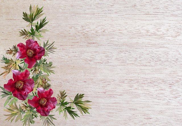 Greeting Card, Flower, Flora, Nature, Desktop