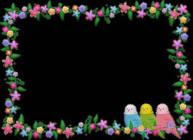 Floral And Bird Frame, Flower Frame, Birds, Parakeet