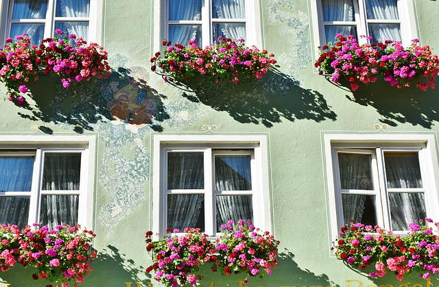 Flowers, Floral Decorations, Geranium, Building, Home