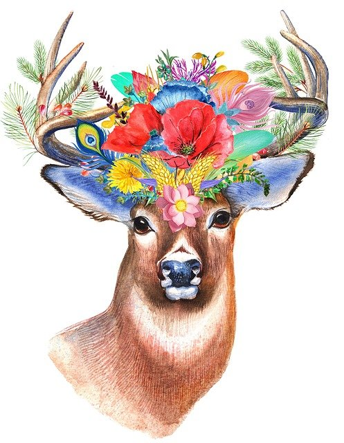 Stag, Wildflower, Floral, Boho, Bohemian, Flower