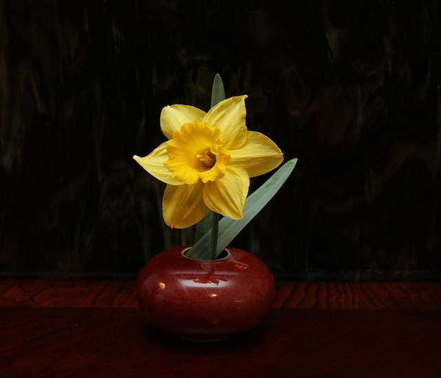 Ikebana, Floral, Arrangement, Daffodil, Flower, Yellow