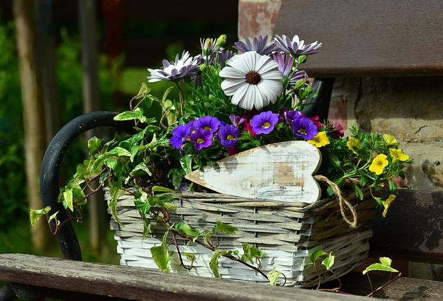 Flower Basket, Floral Decoration, Still Life, Garden