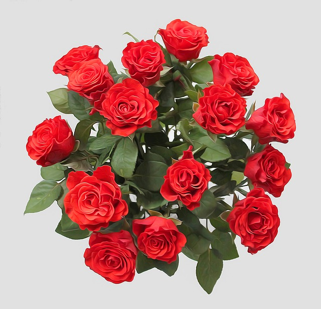Roses, Red, Flowers, Bouquet, Flower, Romance