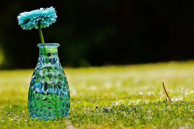 Vase, Glass, Flower, Decoration, Blue, Transparent