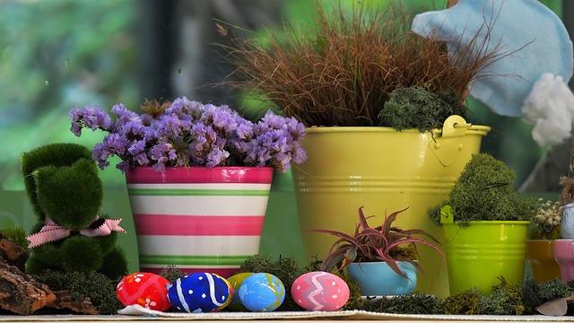 Flower, Outdoors, Garden, Nature, Flora, Pot, Flowerpot