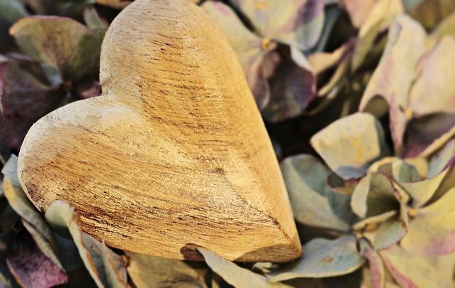 Heart, Wooden Heart, Hydrangea, Flower, Wood, Love