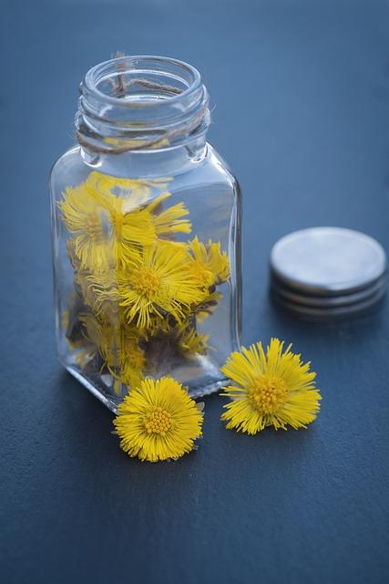 Tussilago Farfara, Kornblütler, Plant, Flower, Yellow