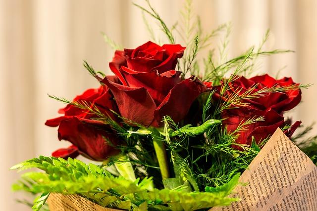 Decoration, Leaf, Closeup, Flower, Nature, Color