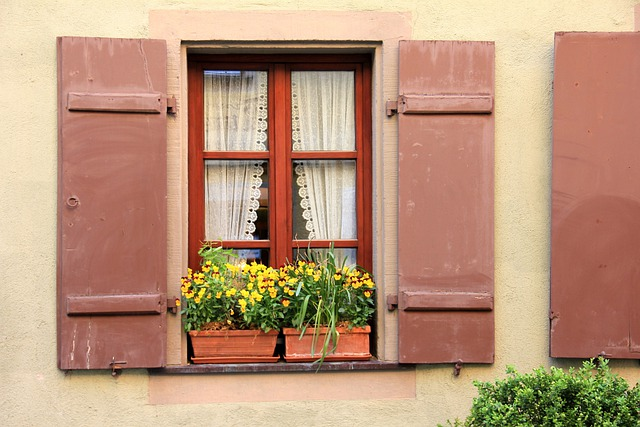 Building, Home, Window, Flowers, Flower, Idyll, Shutter