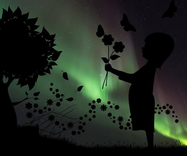 Silhouette, Child, Flower, Northern Lights