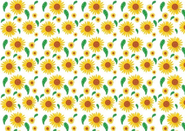 Sunflower, Pattern, Flower, Summer