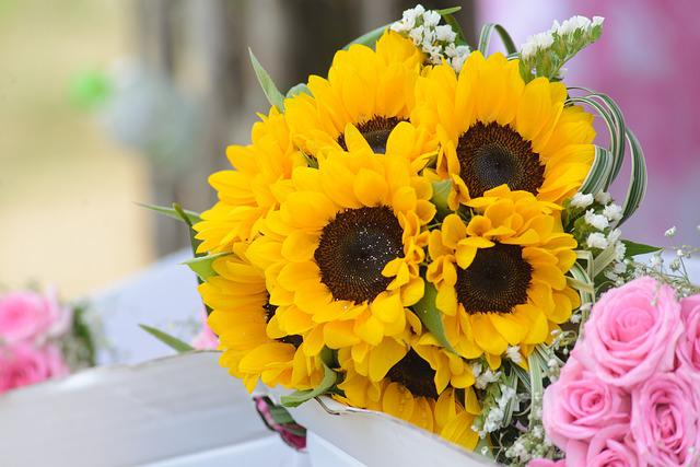 Wedding Flowers, Sunflowers, Flower, Gold