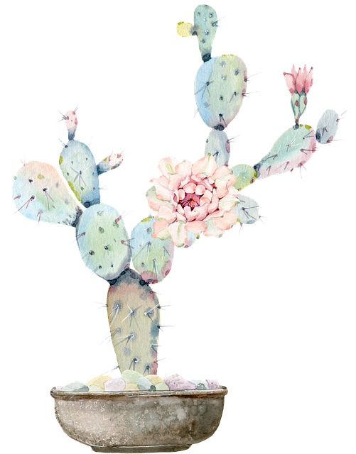 Cactus, Torn, Green, Flower