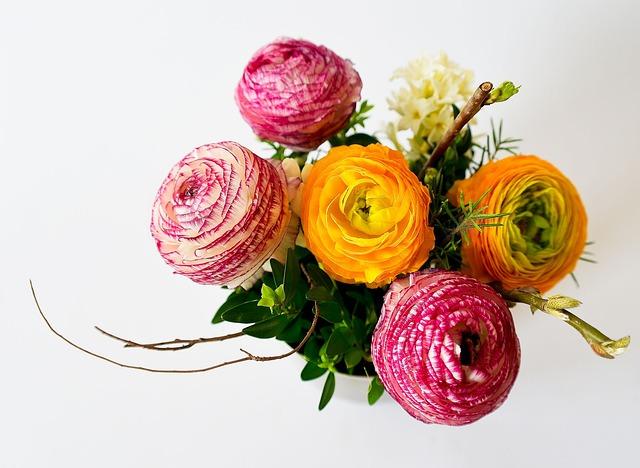 Flowers, Bouquet, Plant, Color, Orange, Red