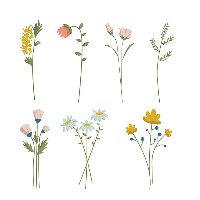 Flowers, Plants, Decorative, Vintage, Classic