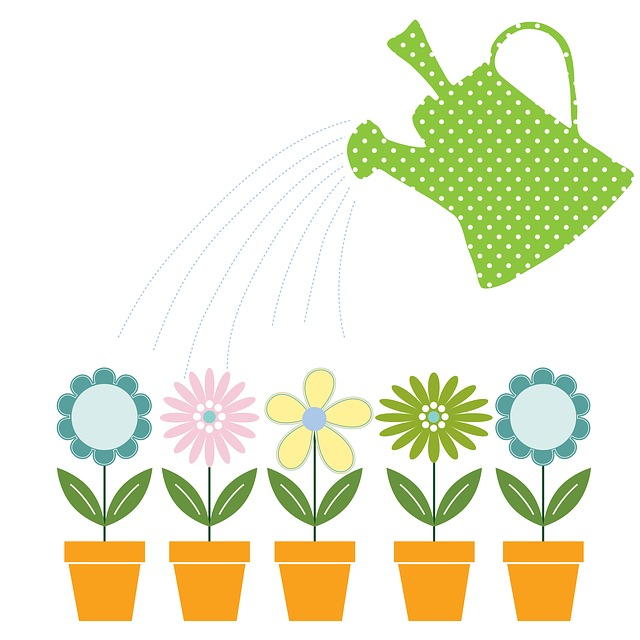 Watering Can, Flowers, Flower Pots, Can, Garden