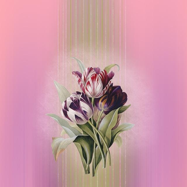 Background, Tulips, Pink, Flowers, Bouquet, Flower