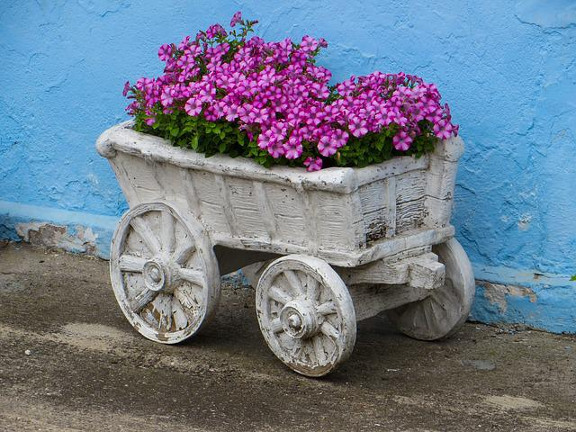 Flowers, Garden, Decoration, Dare, Cart, Summer
