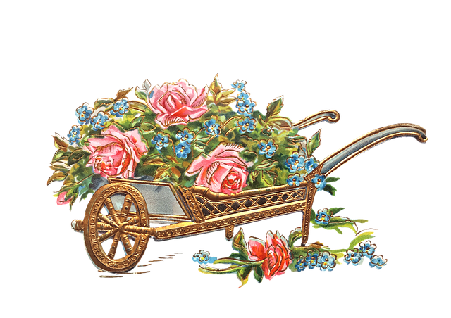 Flowers, Wheelbarrow, Gold, Roses, Pansy, Isolated