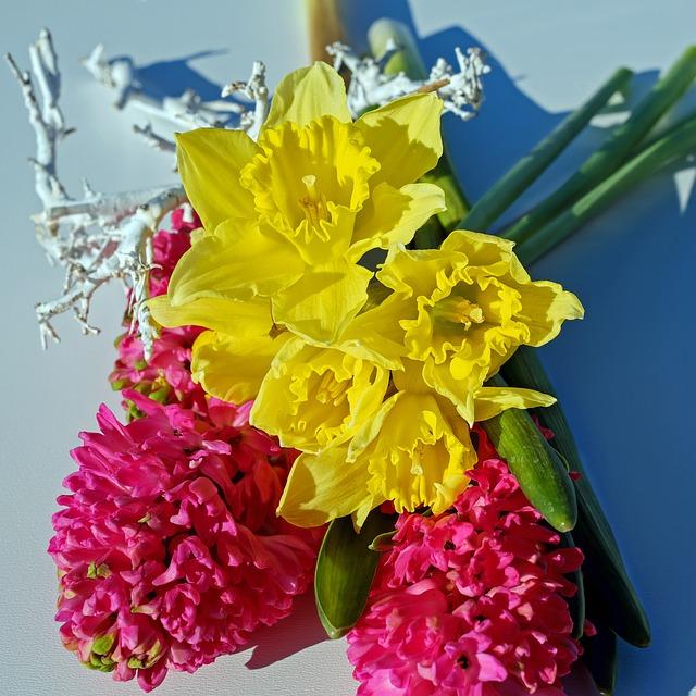 Bouquet, Flowers, Osterglocken, Yellow, Hyacinth, Pink