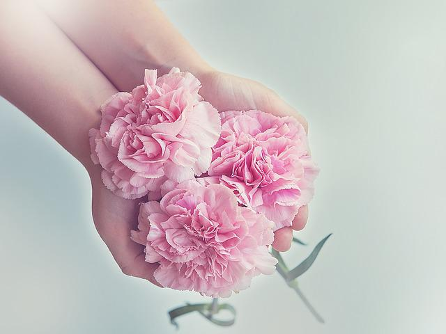 Flowers, Hands, Holding, Holding Flowers, Pink Flowers