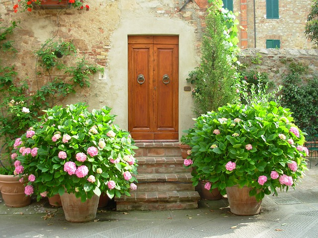 Door, Port, Building, Flowers, Hydrangea, Tuscany