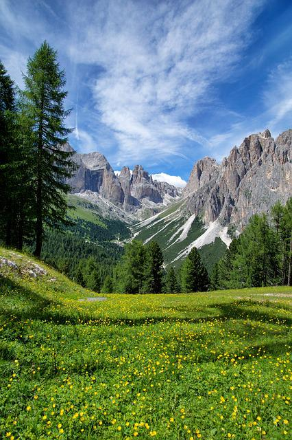 Mountain, Alps, Italy, Flowers, Landscape, Trail, Sky